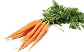 ~carrots~