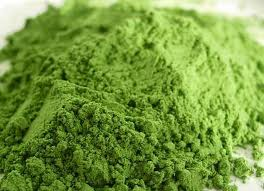 ~wheatgrass powder~